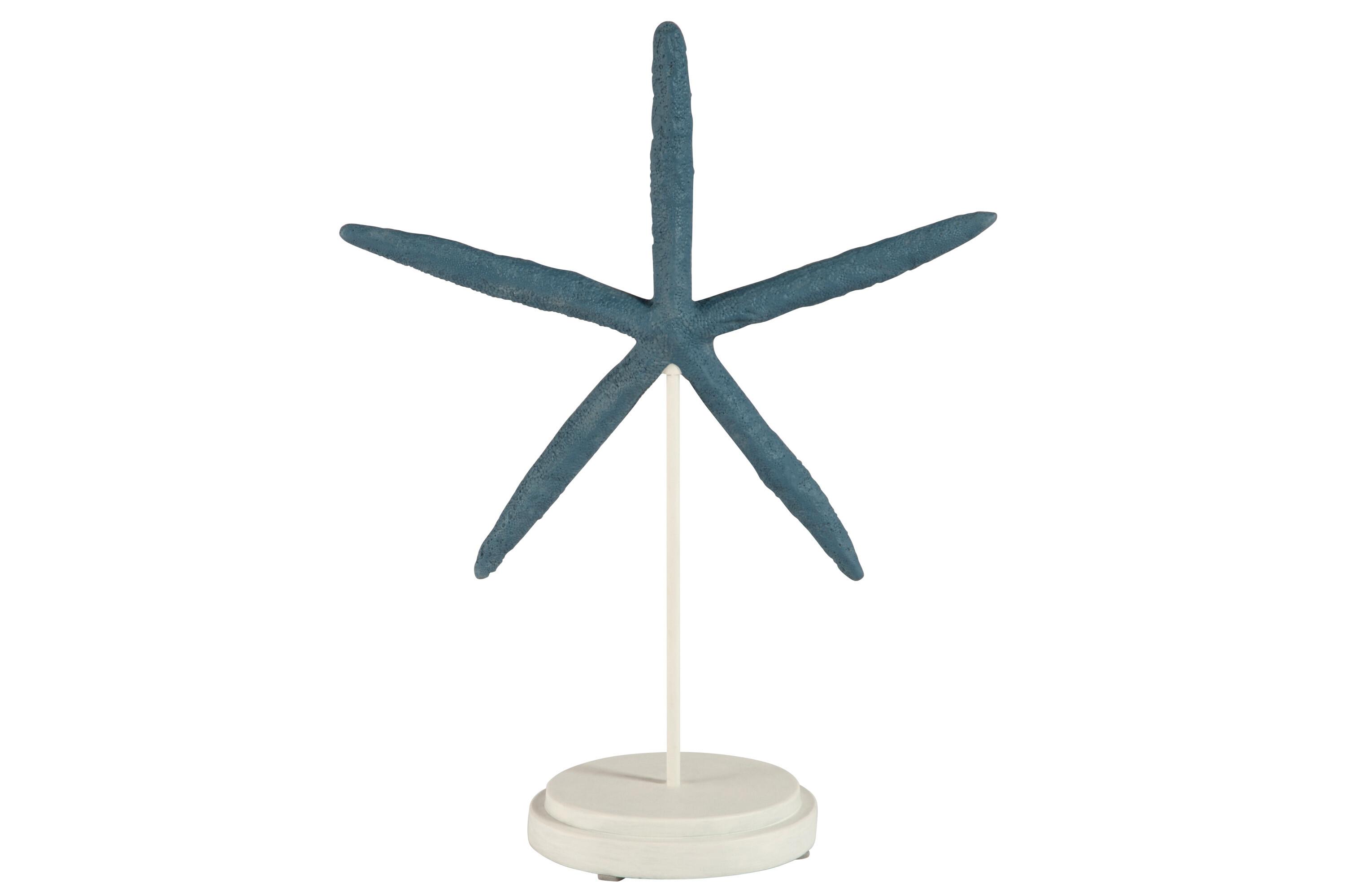Mořská hvězdice na podstavci